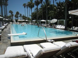 Day-Time Pool Parties in Miami Hotels